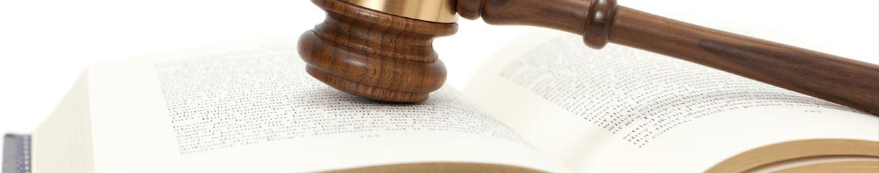 advogado-leandro-pinto-direito-administrativo